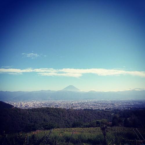 登美の丘ワイナリーからの富士山
