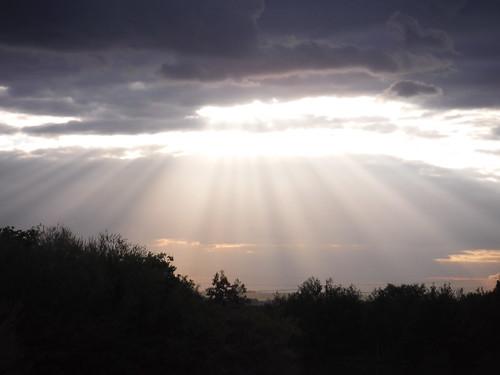 Sky, from Dunton Plotlands
