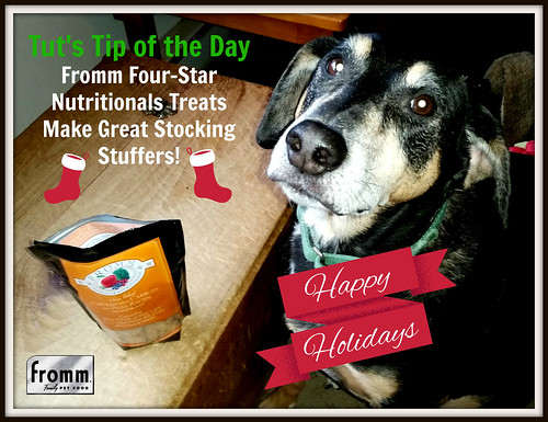 Make the holidays happy with Fromm dog treats