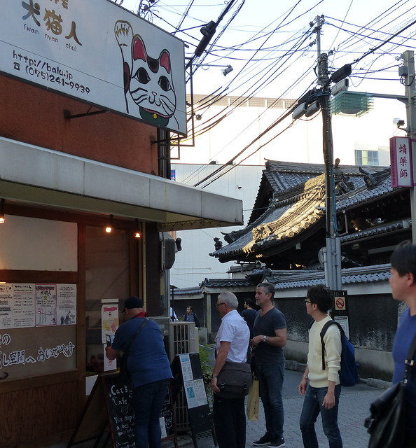 Cat cafe and shrine