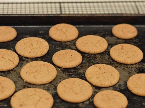 bgs cookies