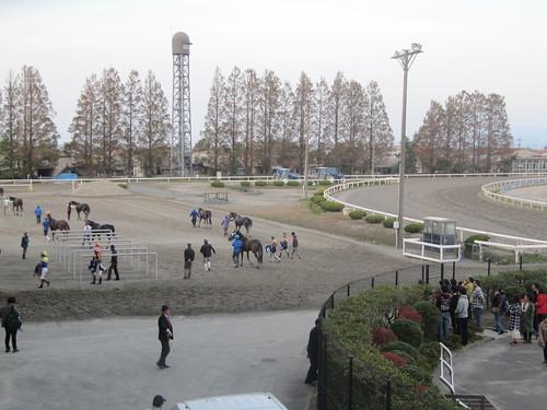 金沢競馬場の枠場の位置