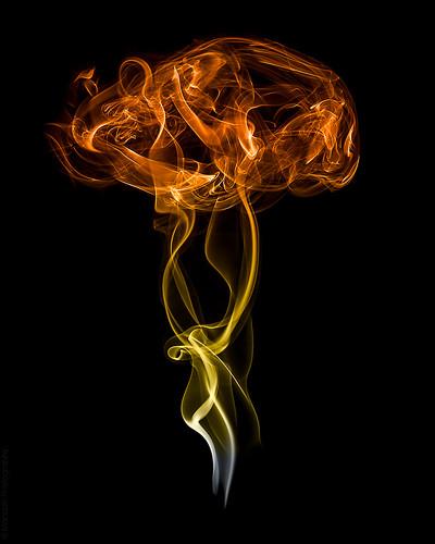 Smoke bomb // 14 08 15