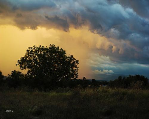sky storm tree rain clouds amazing 600d kozani lefkovrisi kuollutsielu irenv