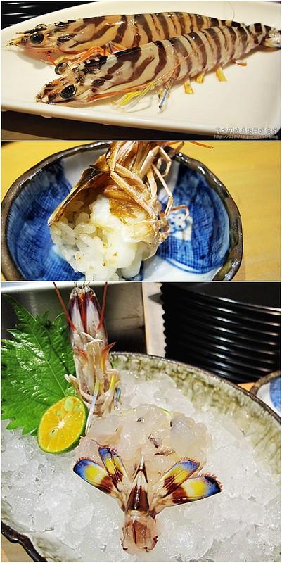 11活體蝦