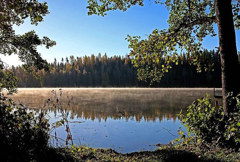 Nice! #thisisfinland #visitfinland #finnishnature #nature #fall #autumn #fog #morning #finland #mustiala #virtuaalikyla