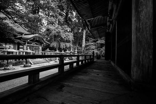 IMG_3055_LR__Kyoto_2015_09_04