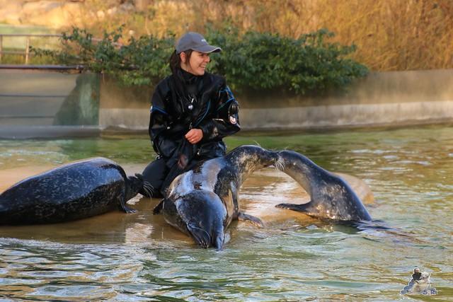 Zoo Berlin 06.12.2015    066