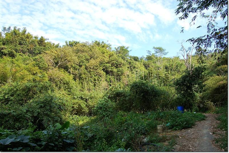 竹子赤山登山口