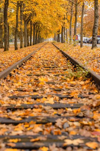 Herbst in Isenburg