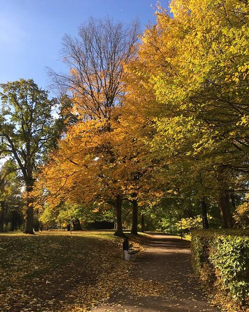 saturday, autumn, helsingborg