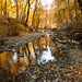 Mud Creek by A Great Capture