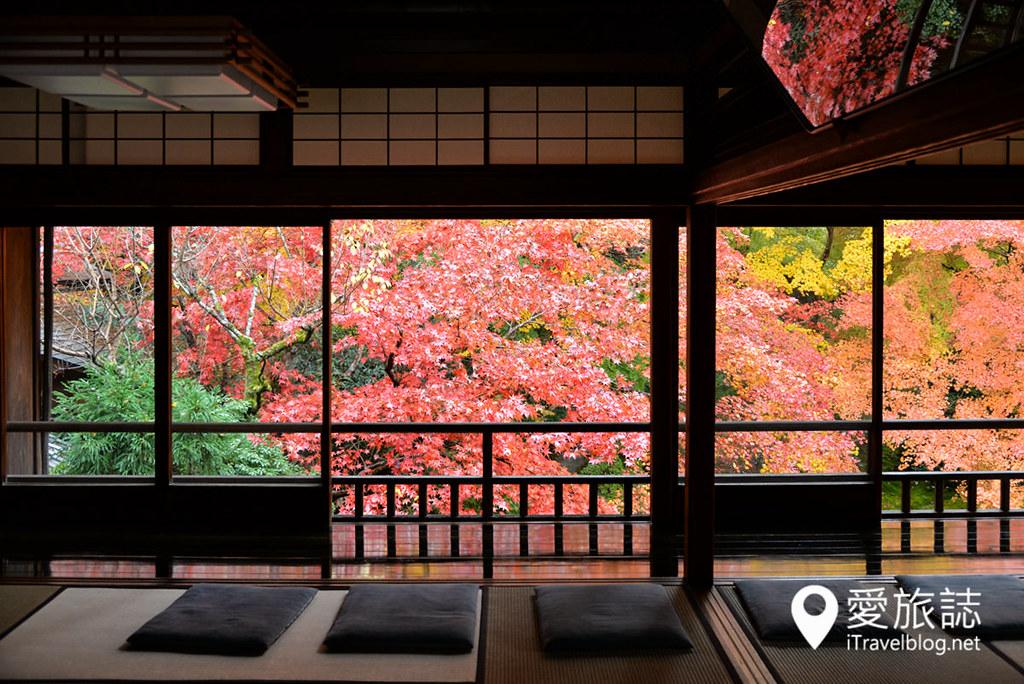 京都赏枫景点 琉璃光院 17