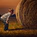 A Boy and His Hay Bales