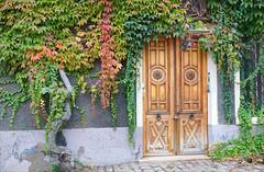 2016-10-24 10-30 Burgund 162 Tournus