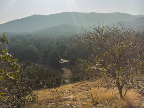 india hill polo gujarat reserveforest sabarkantha abhapur
