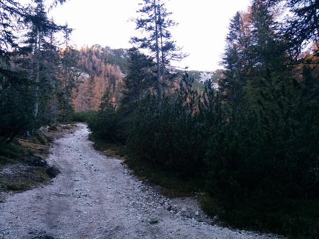 Aufstieg Kühwiesenhütte