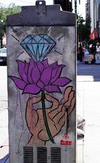 Diamond on Lotus - Free Humanity