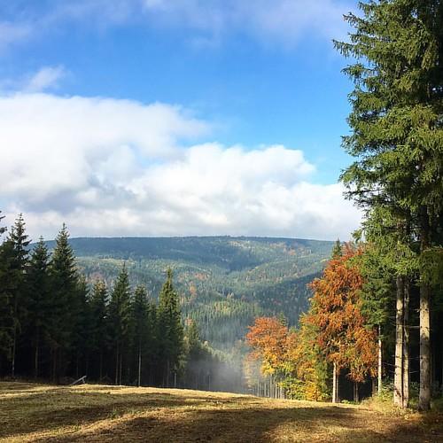 Eine tolle 10 km Tour… DE ‹‹ ›› CZ rund um Erlbach    #Hiking #Outdoor #Trekking #Garmin #Oregon750t #fēnix3 #BeatYesterday #running66