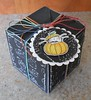 Pumpkin Kitty Treat Box