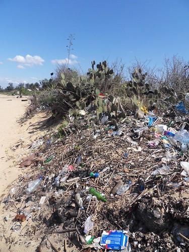 Maputon jäteongelma näkyy katujen lisäksi Catemben rannalla lahden toisella puolella.