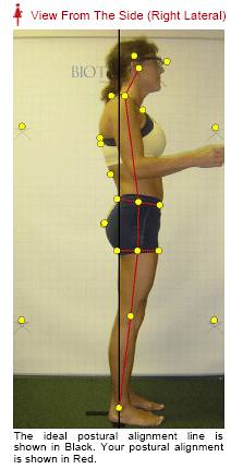 Ideal Posture Alignment
