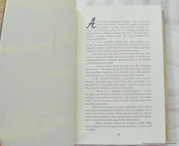 diagramação,Resenha, livro, O céu está em todo lugar, Jandy Nelson, Novo Conceito