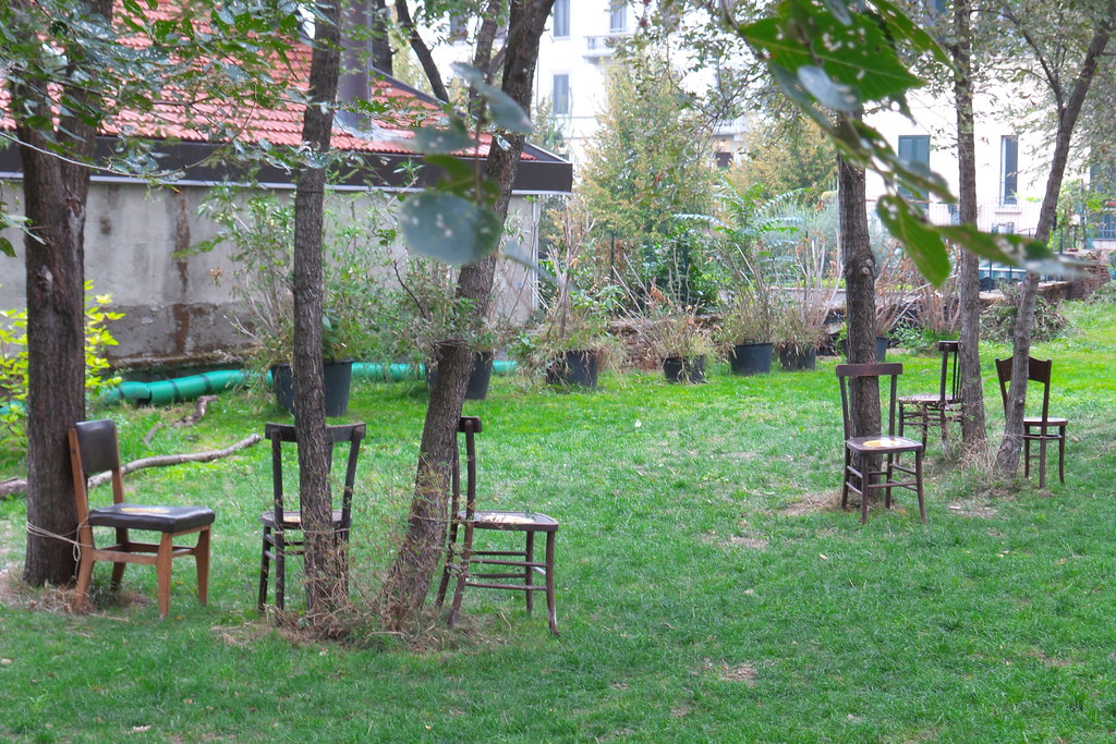 Twin trees, Giardino Nascosto #GreenCityMilano