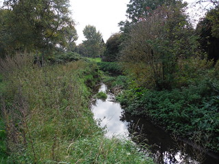 The Lea, in Limbury Meads