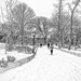 Central Park in the Snow by Bob C Pix