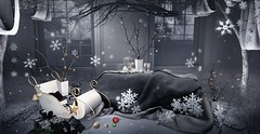 Home Decor: Merry Winter
