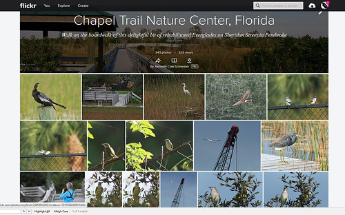 Chapel Trail FLICKR Album
