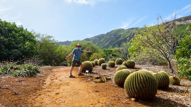 Barrel Cactus!