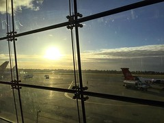 The sun shows up as I leave Seattle. It was definitely gray and wet during my 8-day visit. . #seatacairport #grayandwet #rainyseattle #seattle #seattlevisit #homeforthanksgiving #pnw