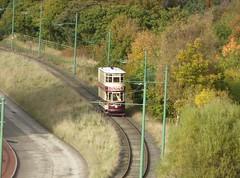 Autumnal Tram Ride