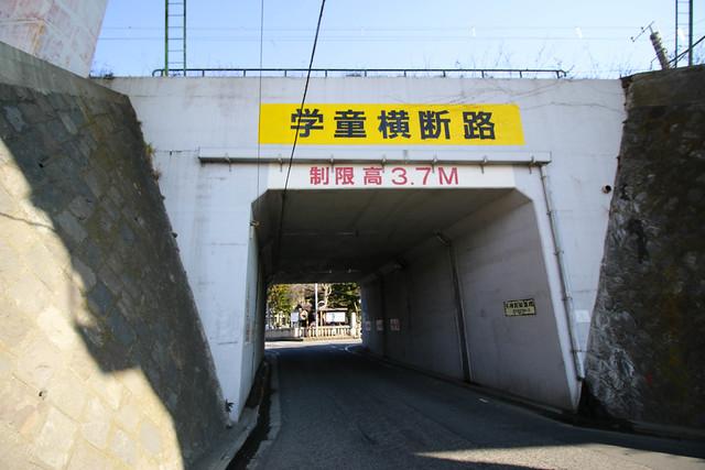 20150211-曽我丘陵-0018.jpg