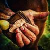 Traditional bowmaker (bowyer?) Chuck Stern of Nashville works to flintknap an arrowhead. #ondragontime #southernillinois #soill #618 #nashvilleil #flint #arrowhead #flintknapping #flintknapper #craftsman #traditional #archery #primitivearchery