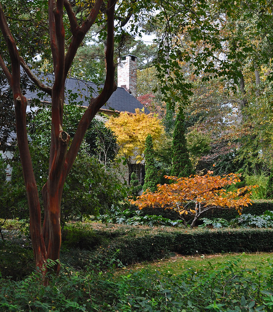 Front Garden in Fall (2)