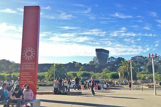 Neighborhood Days - California Academy of Sciences Afternoon end
