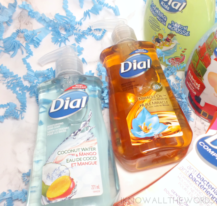 handwashing with Dial (3)