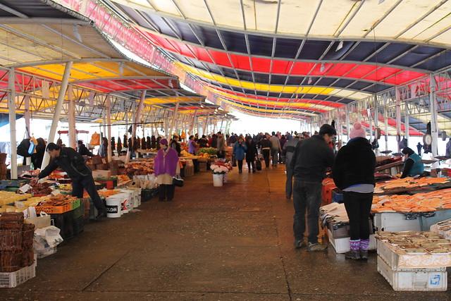mercado-fluvial-valdivia