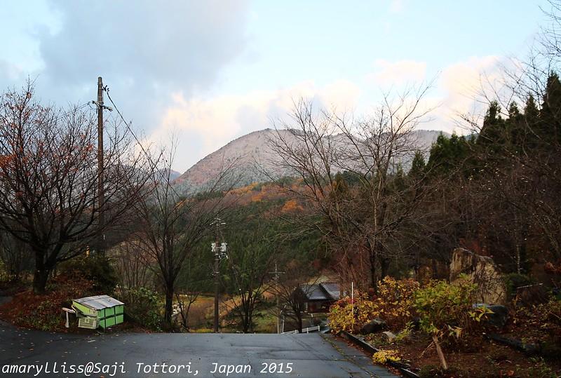 2015鳥取