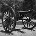 Civil War Cannon by +Lonnie & Lou+