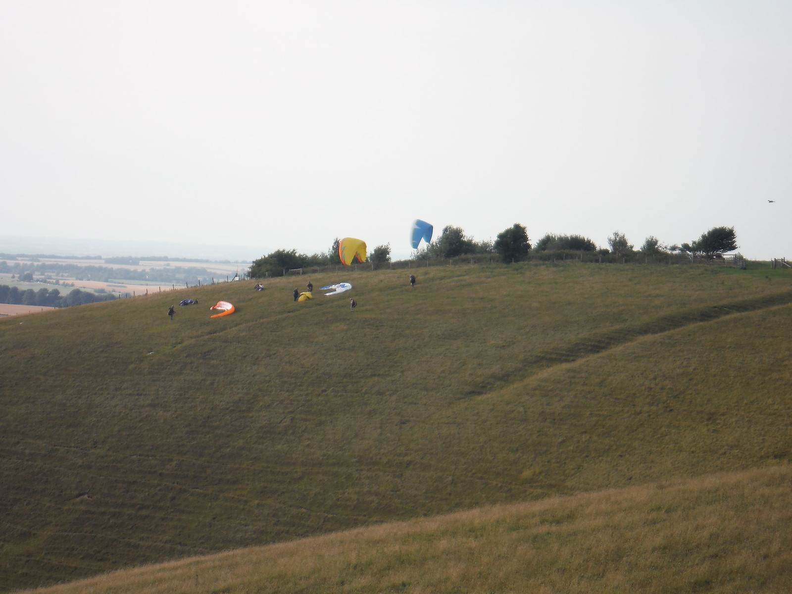 Gliders on Milk Hill SWC Walk 127 Pewsey Circular