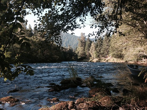 Mckenzie river August 2015