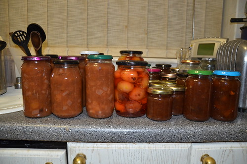plum preserves Sept 15