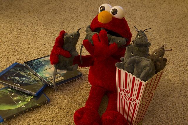 movie night 3