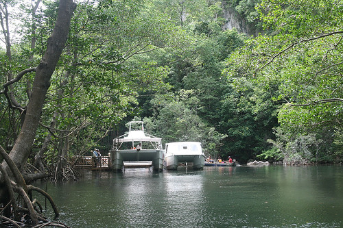 31 - Los Haitises national park - Small harbor in the mangroves / Los Haitises Nationalpark - Hafen in den Mangroven