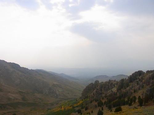 landscape smoke basin