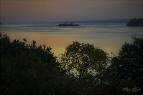 trees nature water fog sunrise river landscape island ukraine dnieper